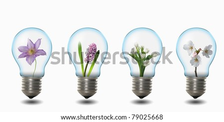 four light bulbs with nature simbols inside - stock photo