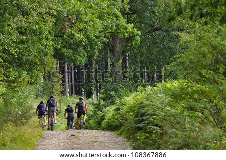 Four mountain bikers biking in a green forest in the Belgian Ardennes - stock photo
