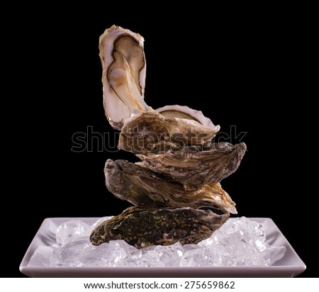 Four oyster shell on ice as balance stack, black background - stock photo