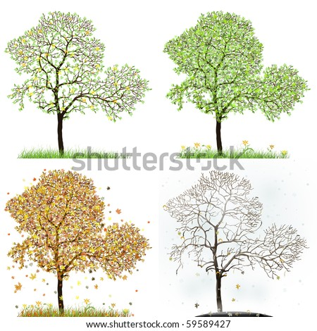 Four season trees - stock photo