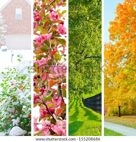 Four seasons collage.  Set of beautiful landscapes at  winter, spring, summer and autumn. - stock photo