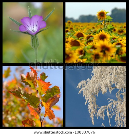 four seasons collection - stock photo
