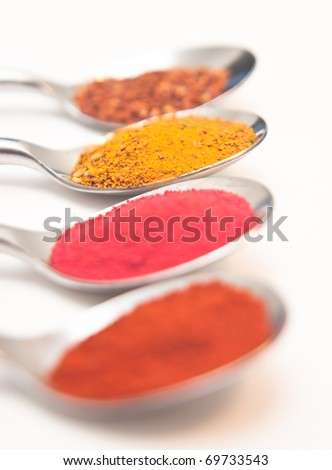 Four Spices presented in teaspoons - stock photo