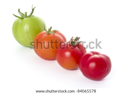 Four tomatoes on white background - differing stages of ripening.