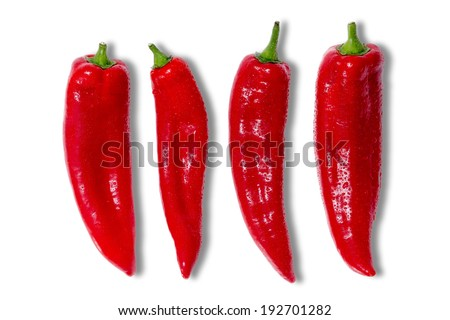 Four whole fresh red hot chili peppers for a spicy cooking ingredient covered in tiny water droplets arranged in a line on a white background - stock photo