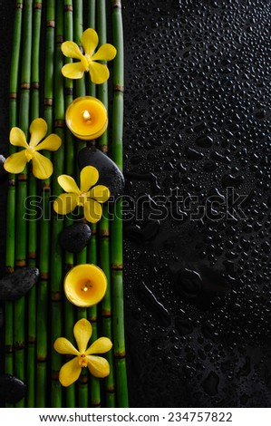 Four yellow orchid with black stones with candle on bamboo grove on wet background - stock photo