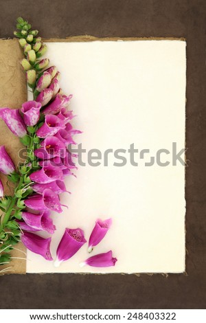 Foxglove flower border on a natural hemp notebook and brown paper background. Digitalis pupurea. - stock photo