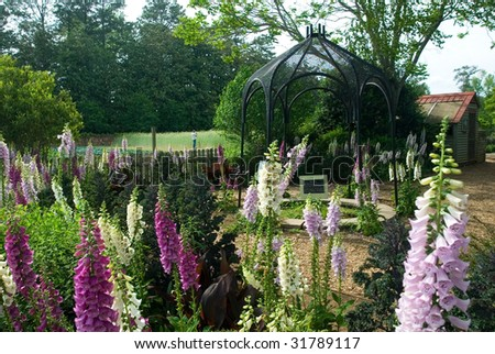 Foxglove garden with metallic archway - stock photo