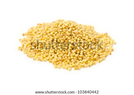 foxtail millet - stock photo