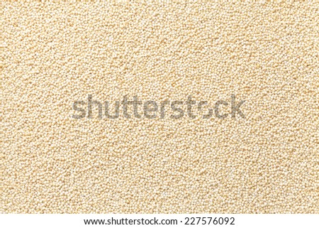 Foxtail millet, Glutinous foxtail millet - stock photo
