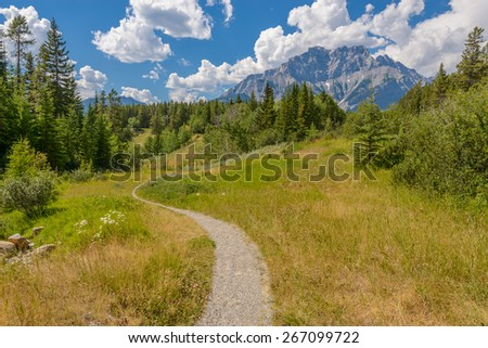 Fragment of a nice trail at Bow Lake in Alberta, Banff National Park, Canada. - stock photo