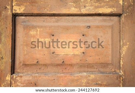 Fragment of a old vintage door - stock photo