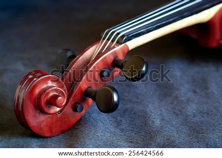 fragment of a violin on black - stock photo