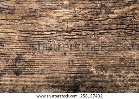 fragment of old wooden background - stock photo