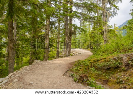 Fragment of Panorama Trail in Sea to Sky Gondola Park in Vancouver, Canada. - stock photo