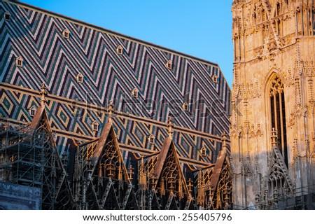 Fragment of St. Stephen's Cathedral (Stephansdom), Vienna, Austria - stock photo