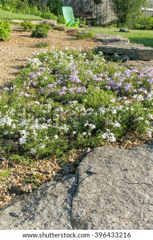 Fragment of the alpine slide with flowering phlox subulatein the summer garden in evening sun - stock photo