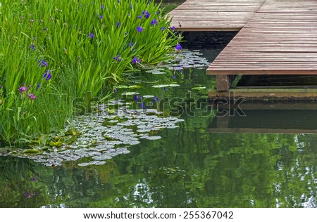 fragments of a garden pond - pier made of wooden planks, surface of the pond and beautiful water plants  - stock photo
