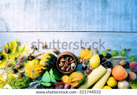 Frame from pumpkins and organic vegetables, background for text or logo,cooking concept - stock photo