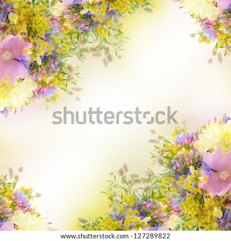 Frame from  summer flowers over white with bokeh and copy space, floral background - stock photo