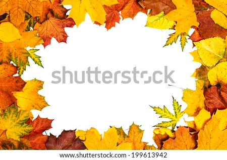 Frame Vivid Colorful Autumn Leaves Natural Stock Photo 199613942 ...