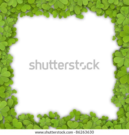 Frame made of clover. Isolated on white background.