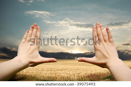 Frame made of hands at wheat field at sunset - stock photo