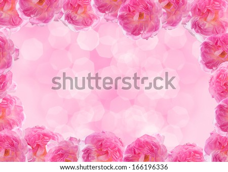 Frame made of pink roses. Isolated on pink bokeh background.