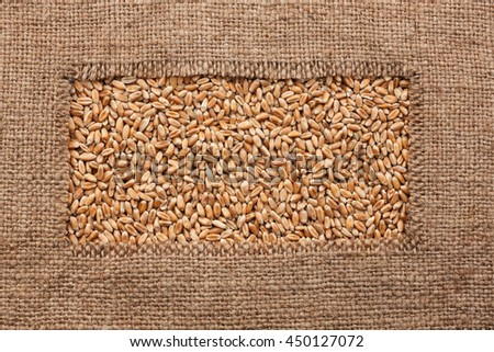 Frame made of rough burlap lies on wheat grains, as background