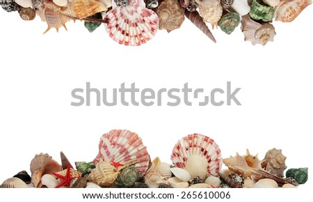 Frame made of shells isolated on white background. - stock photo