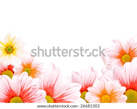 Frame made of yellow, red and orange daisies - stock photo