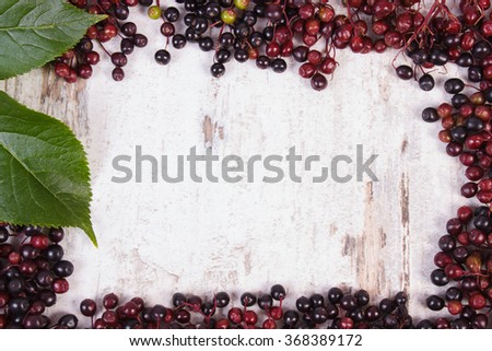 Frame of autumn fresh elderberry with green leaf and copy space for text on old rustic wooden background, healthy nutrition, alternative medicine and therapy - stock photo