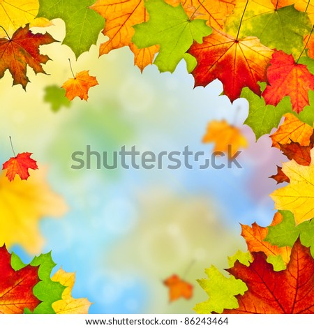 Frame of colorful autumn leaves against blue sky - stock photo