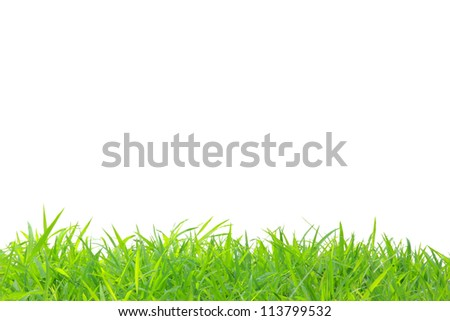 frame of grass at below edge - stock photo