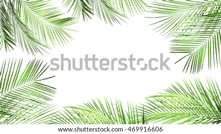 Frame of palm leaves with space for text on white background.