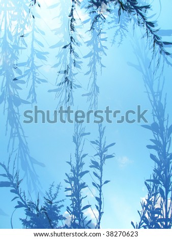 frame of plants on a blue background