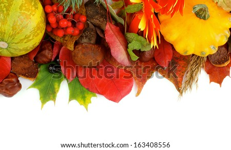 Frame of Various Autumn Leafs, Vegetables, Berries, Mushrooms, Flowers and Nuts isolated on white background. Top View
