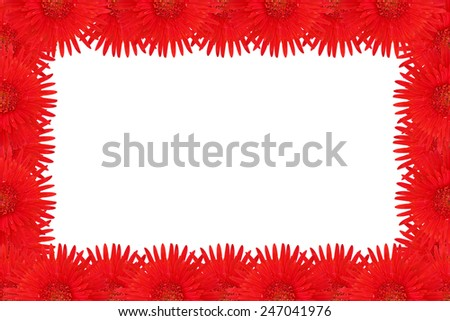 Frame red gerbera flower beautiful - stock photo