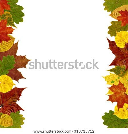Frame with beautiful autumn leaves isolated on white. - stock photo