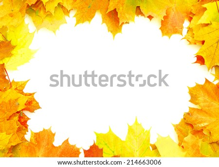 Frame with colored autumn maple leaves