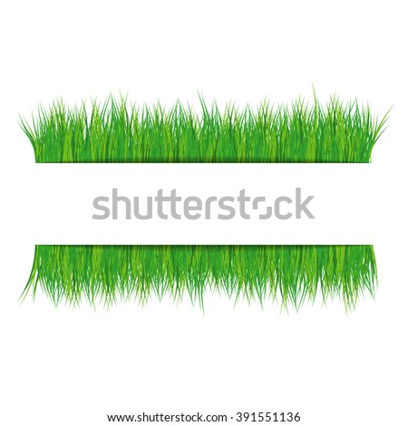 Frame with green grass on white background