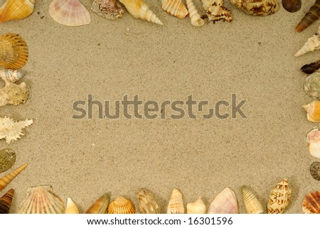 Frame with many different seashells. Place your own object or tekst in the frame. - stock photo