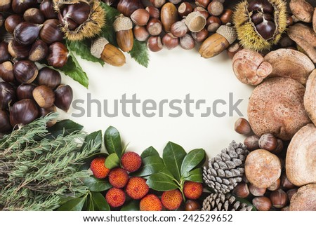 Frame with space for text, with naltural autumn and Christmas items fruits and nuts - stock photo