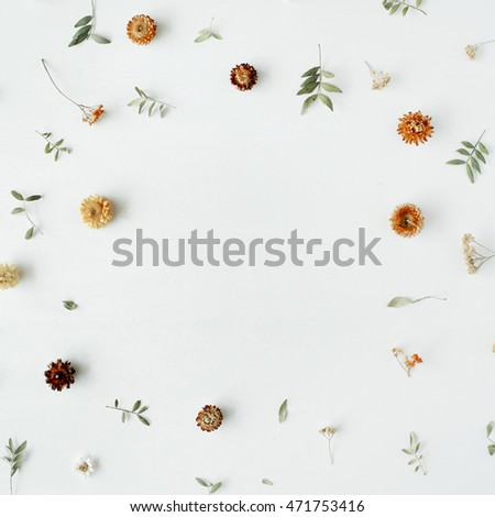 frame with yellow dry flowers, branches, leaves and petals isolated on white background. flat lay, overhead view