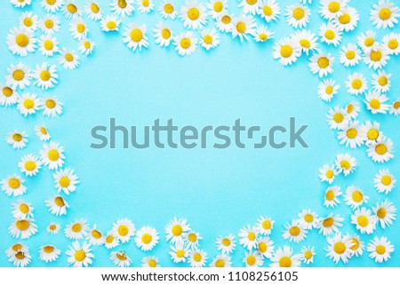 framed blue background with white beautiful daisies