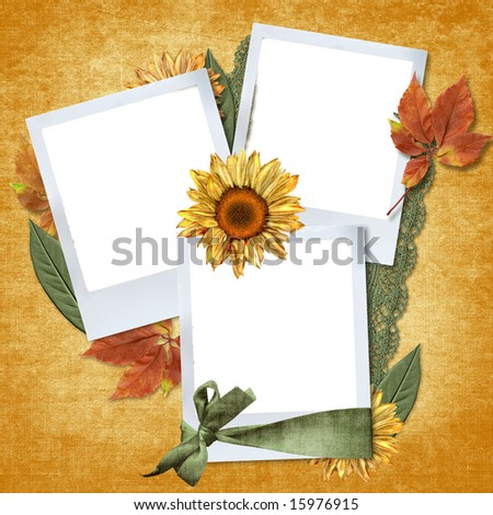 framework for photo with sunflowers