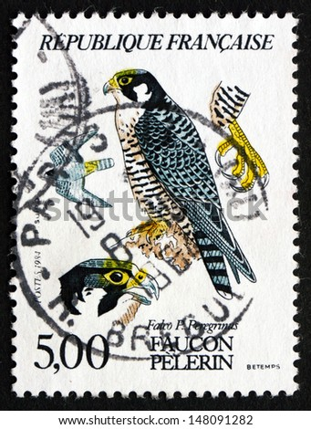 FRANCE - CIRCA 1984: a stamp printed in the France shows Peregrine Falcon, Falco Peregrinus, Bird of Prey, circa 1984 - stock photo