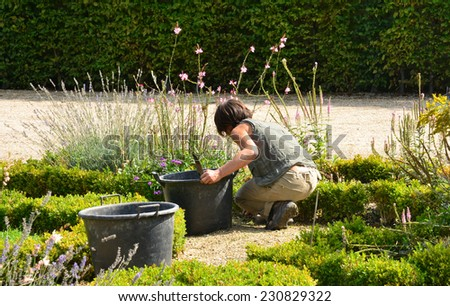 France, gardener in the parc of Versailles Palace - stock photo