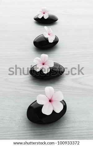 frangipani flower on black stone, zen spa on white wood - stock photo