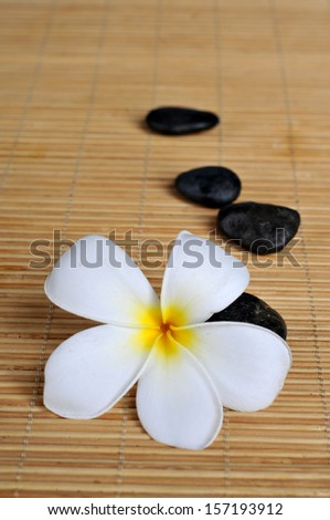 frangipani flower with zen stones  arranged on bamboo mat, shallow DOF - stock photo